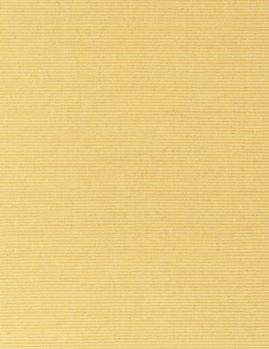 Solid Butter Yellow Flatweave Eco Cotton Rug - 4' x 6'